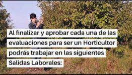 EDUCARTE COMO HORTICULTOR: ASIGNATURAS Y LAS SALIDAS LABORALES