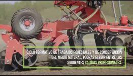 CICLO FORMATIVO DE FP TRABAJOS FORESTALES Y DE CONSERVACIÓN DEL MEDIO NATURAL: TEMARIO Y LAS SALIDAS PROFESIONALES