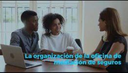 EDUCARTE COMO TÉCNICO DE SEGUROS: ASIGNATURAS Y LAS SALIDAS LABORALES