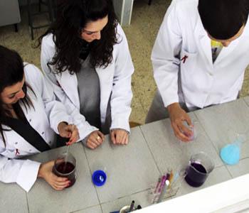 Ciclo Formativo Grado Medio Farmacia Y Parafarmacia Jaen